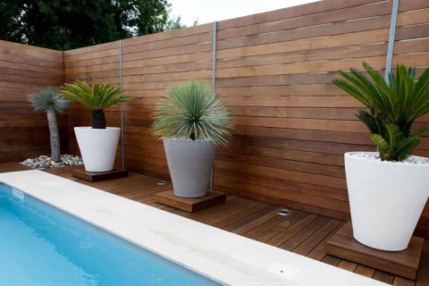 Pool fencing north shore