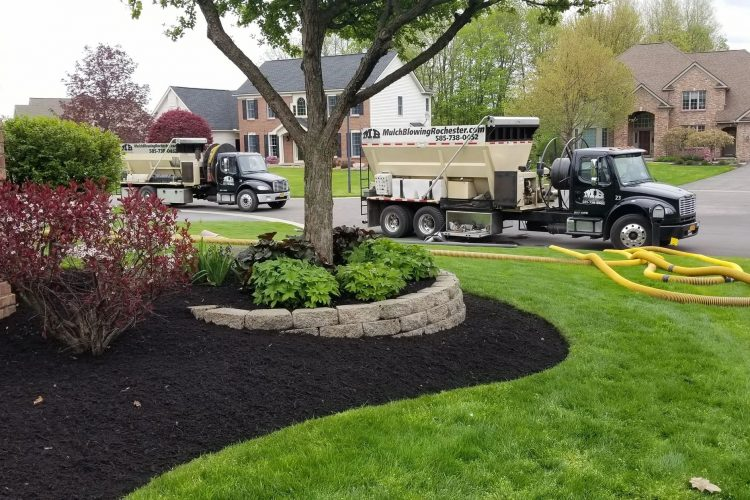 Gold Coast soil and mulch blowing with the highest quality for you